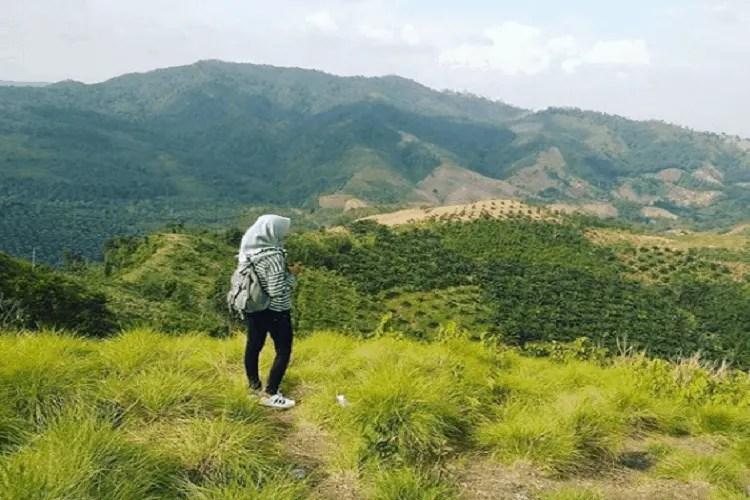 Bukit Batubara Linggapura