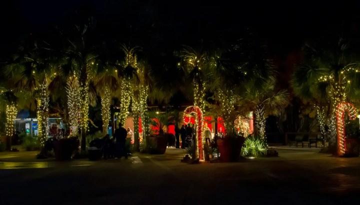 Columbia Zoo Christmas Lights