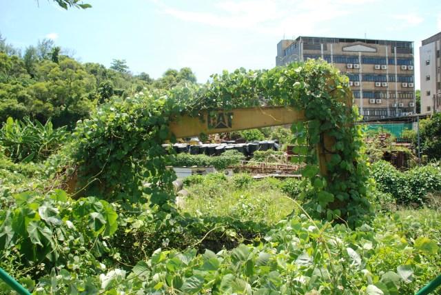 sanatorium3