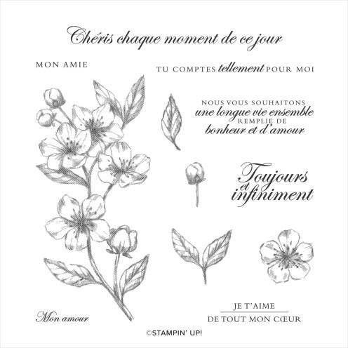 SET DE TAMPONS AMOVIBLES FLEURS POUR TOUJOURS (FRANÇAIS) stampin up scrapbooking carterie mini album ...