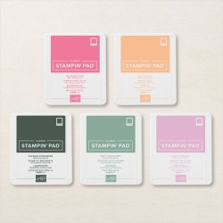 2021–2023 IN COLOR CLASSIC STAMPIN' PAD #155638