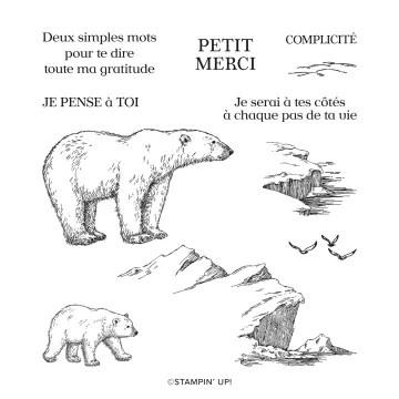 SET DE TAMPONS AMOVIBLES OURS POLAIRES (FRANÇAIS) stampin up sara crea scrap