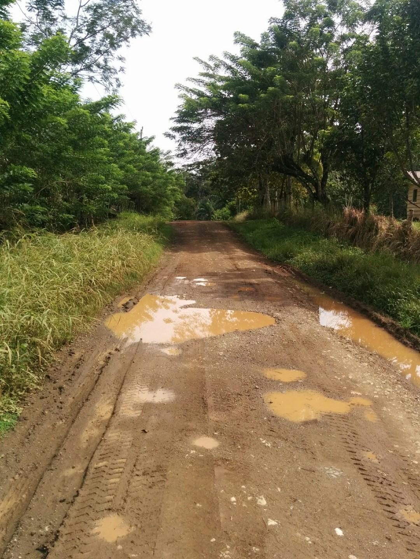 Rain filled potholes in road