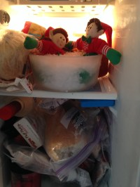 The freezer reminds the elves of their North Pole home.