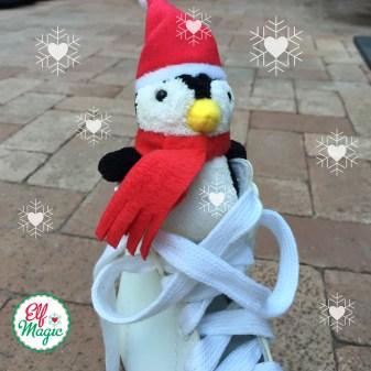 Pom Pom Penguin Awreness Day