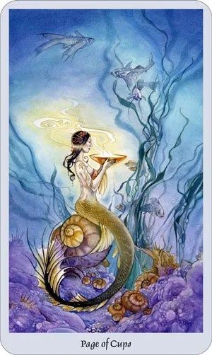 shadowscapes-tarot-cups-page