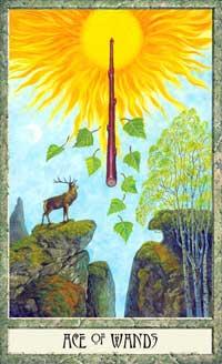 druidcraft-tarot-wands-01