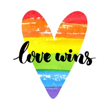 Image result for love wins