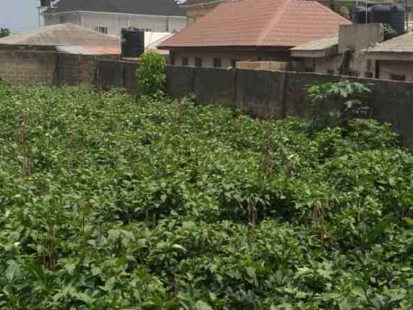 Two fenced plots of lands beside Laspotech main campus, Ikorodu for sale