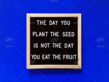 Image result for wisdom gardening quotes