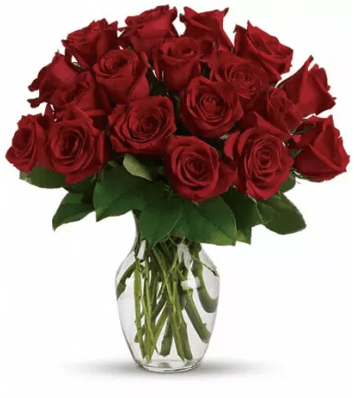 Enduring Passion   12 Red Roses   Miller Place  NY Florist Enduring Passion   12 Red Roses
