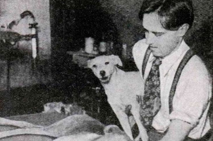 Dr. Robert E. Cornish holding Lazarus IV, a dog he brought back from the dead