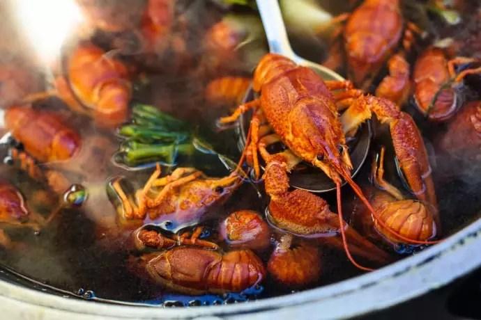 Can Pregnant Women Eat Crawfish?