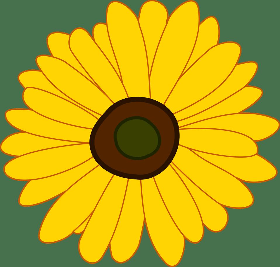 Sunflower   Free Stock Photo   Illustration of a sunflower ... (958 x 915 Pixel)