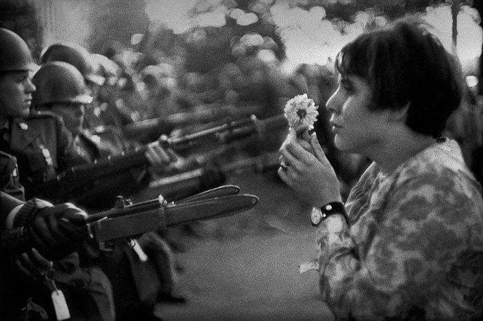 الورد رسالة سلام واستراحة محارب