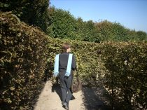 Labirinto em Vilandry