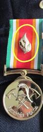 Médaille d'ancienneté des 30 ans