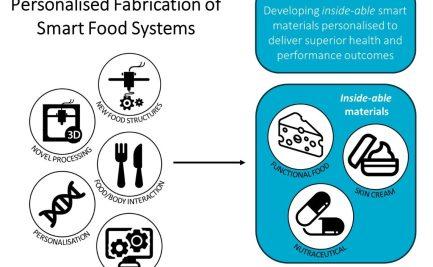 Infographic depicting Personalised Fabrication of Smart Food Systems test bed. On the left are research areas such as new food structures, novel processing, food/body interactions, personalisation, and in silico modelling) that will lead to developments like functional food, skin cream, and nutraceuticals.