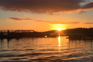 sunrise over salmon pens