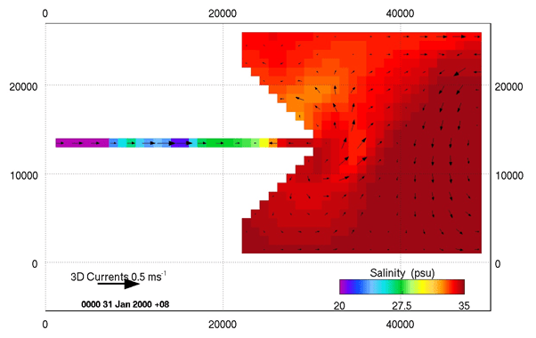Unstructured model solution for salinity and surface currents at 30 days.