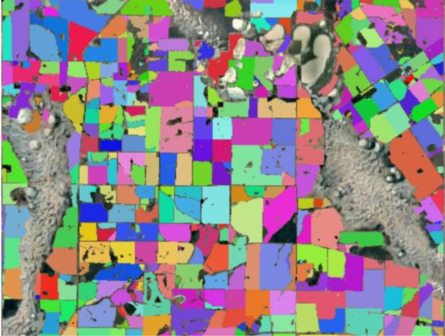 A map showing paddocks