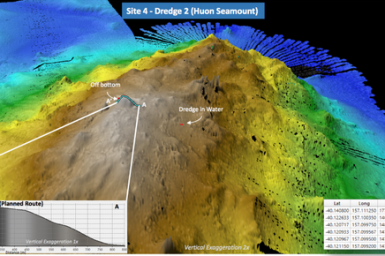 Colourful 3D image of sea floor indicating terrain levels