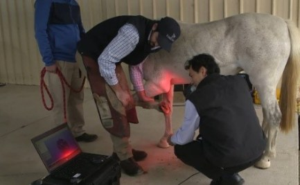 Photo of the hoof of a horse being 3D scanned by CSIRO for making custom-fit horse-shoe with 3D printed Titanium. This horse-shoe allowed this mare to walk for the first time in months.