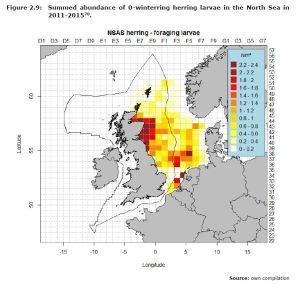Figure 2.9: Summed abundance of 0-winterring herring larvae in the North Sea in 2011-2015.