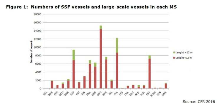 Figure 1: Numbers of SSF vessels and large-scale vessels in each MS