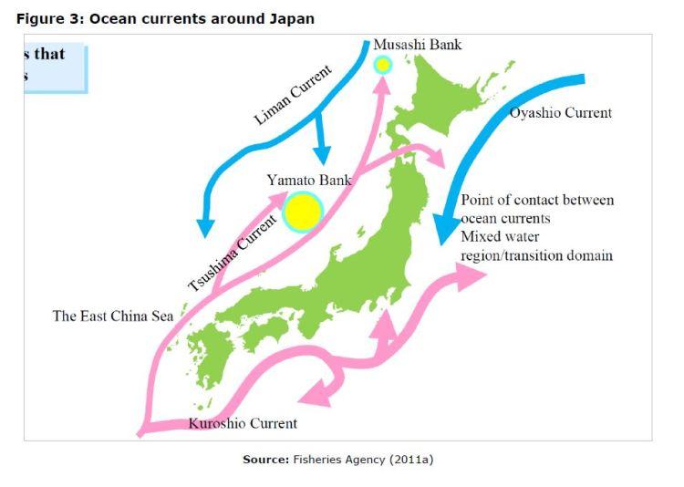 Figure 3: Ocean currents around Japan