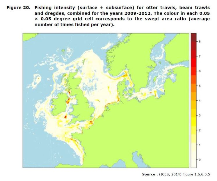 Figure 20. Fishing intensity (surface + subsurface) for otter trawls, beam trawls and dregdes, combined for the years 2009-2012. The colour in each 0.05 × 0.05 degree grid cell corresponds to the swept area ratio (average number of times fished per year).