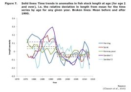Figure 7. Solid lines: Time trends in anomalies in fish stock length at age (for age 2 and over), i.e. the relative deviation in length from mean for the time series by age for any given year. Broken lines: Mean before and after 1993.