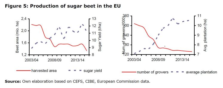 Figure 5: Production of sugar beet in the EU