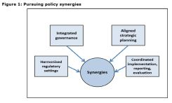 Figure 1: Pursuing policy synergies