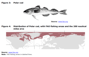 Figure 3 Polar cod and Figure 4 Distribution of Polar cod, with FAO fishing areas and the 200 nautical miles arcs