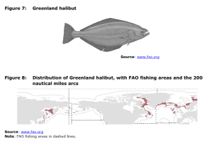 Figure 7 Greenland halibut and Figure 8 Distribution of Greenland halibut, with FAO fishing areas and the 200 nautical miles arcs