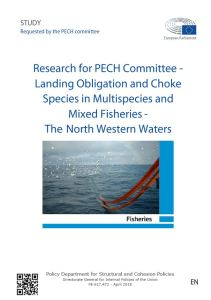 Landing Obligation and Choke Species in Multispecies and Mixed Fisheries - The North Western Waters