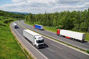 Road enforcement databases: economic feasibility and costs