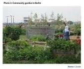 Photo 3: Community garden in Berlin