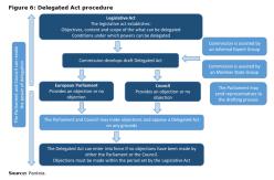 Figure 6: Delegated Act procedure