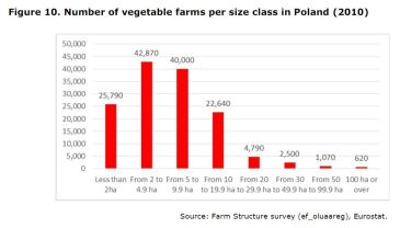Figure 10: Number of vegetable farms per size class in Poland