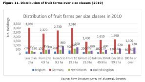 Figure 11: Number of Fruit farms per size class