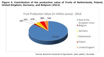 Figure 4: Contribution of the production value of Fruits of Netherlands, Poland, United Kingdom, Germany, and Belgium. Year 2014