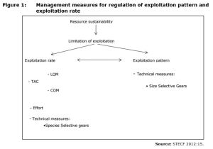 Figure 1: Management measures for regulation of exploitation pattern and exploitation rate