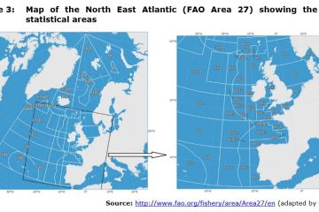Figure 3: Map of the North East Atlantic (FAO Area 27) showing the ICES statistical areas