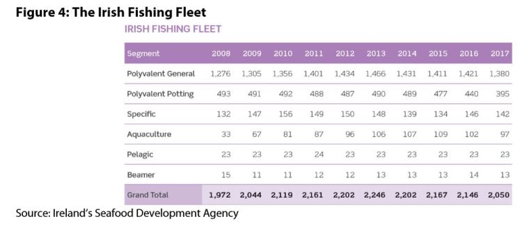 Figure 4: The Irish Fishing Fleet