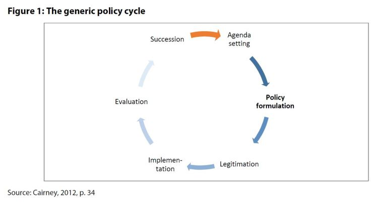 Figure 1: The generic policy cycle