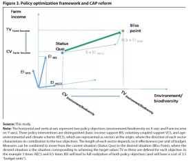 Figure 3. Policy optimization framework and CAP reform