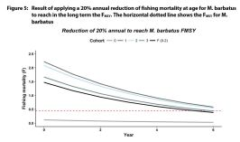 Result of applying a 20% annual reduction of fishing mortality at age for M. barbatus to reach in the long term the FMSY. The horizontal dotted line shows the FMSY for M. barbatus