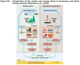 Figure 50: Comparison of the carbon and energy flows in bioenergy and fossil energy systems (Berndes et al., 2010)